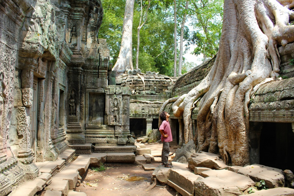Nathaniel and the trees in Ta Prohm