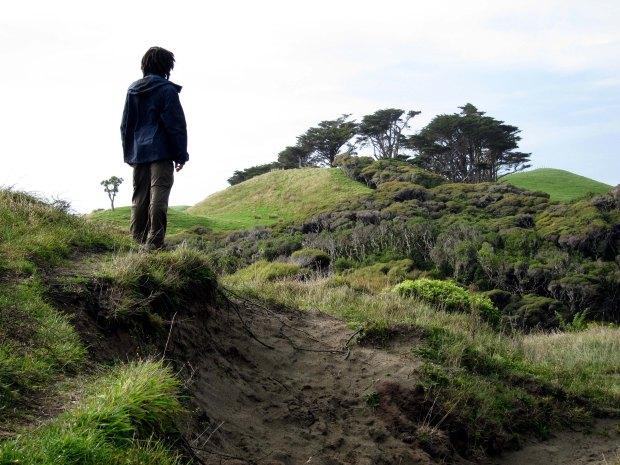 Hills around Wharariki