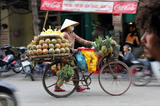 Pineapple vendor in Hanoi